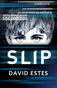 Slip cover